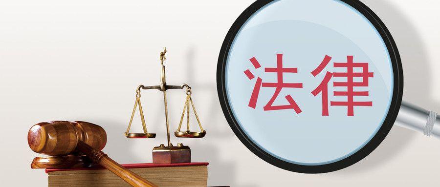 犯罪集团的法律规定是什么